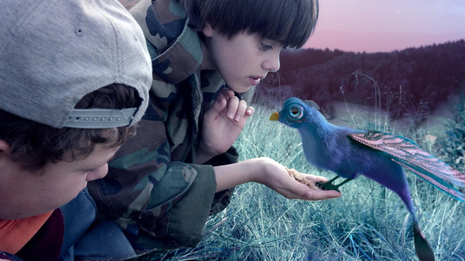 Film Mit Blauen Wesen